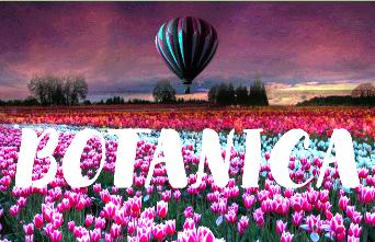 """Вся недорогая натуральная косметика """"Botanica"""" от Bio World."""